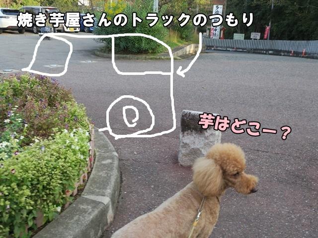 IMG_545720191027a.jpg