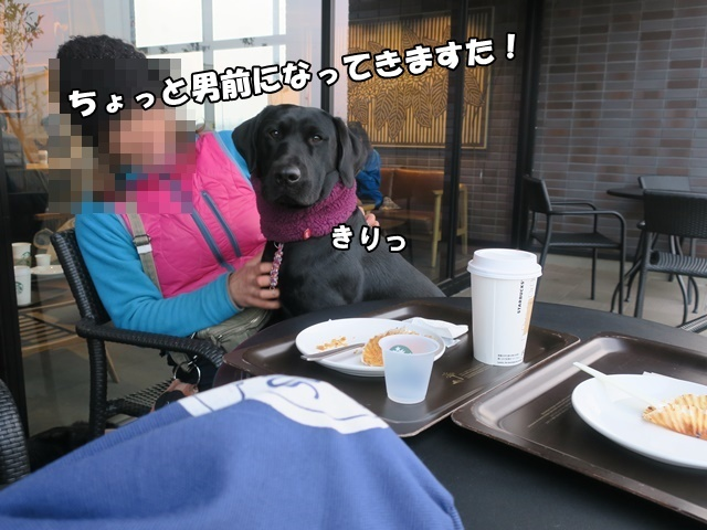 IMG_756620200208a.jpg