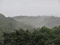 霧湧く山々