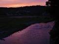 烏飛ぶ夕焼