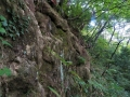 道沿いの岩壁