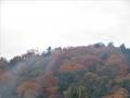 雲湧く紅葉山