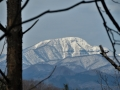 木間越の大東岳
