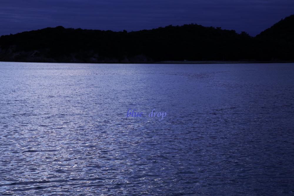 光と影の海