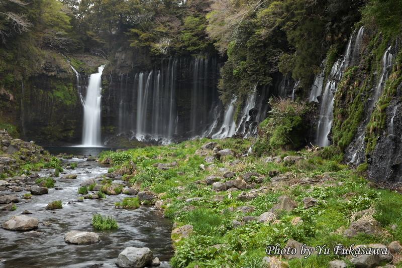 思ふ に 滝川 るる はむ と 瀬 の を あ 末 われ み 岩 も て ぞ か にせ 早