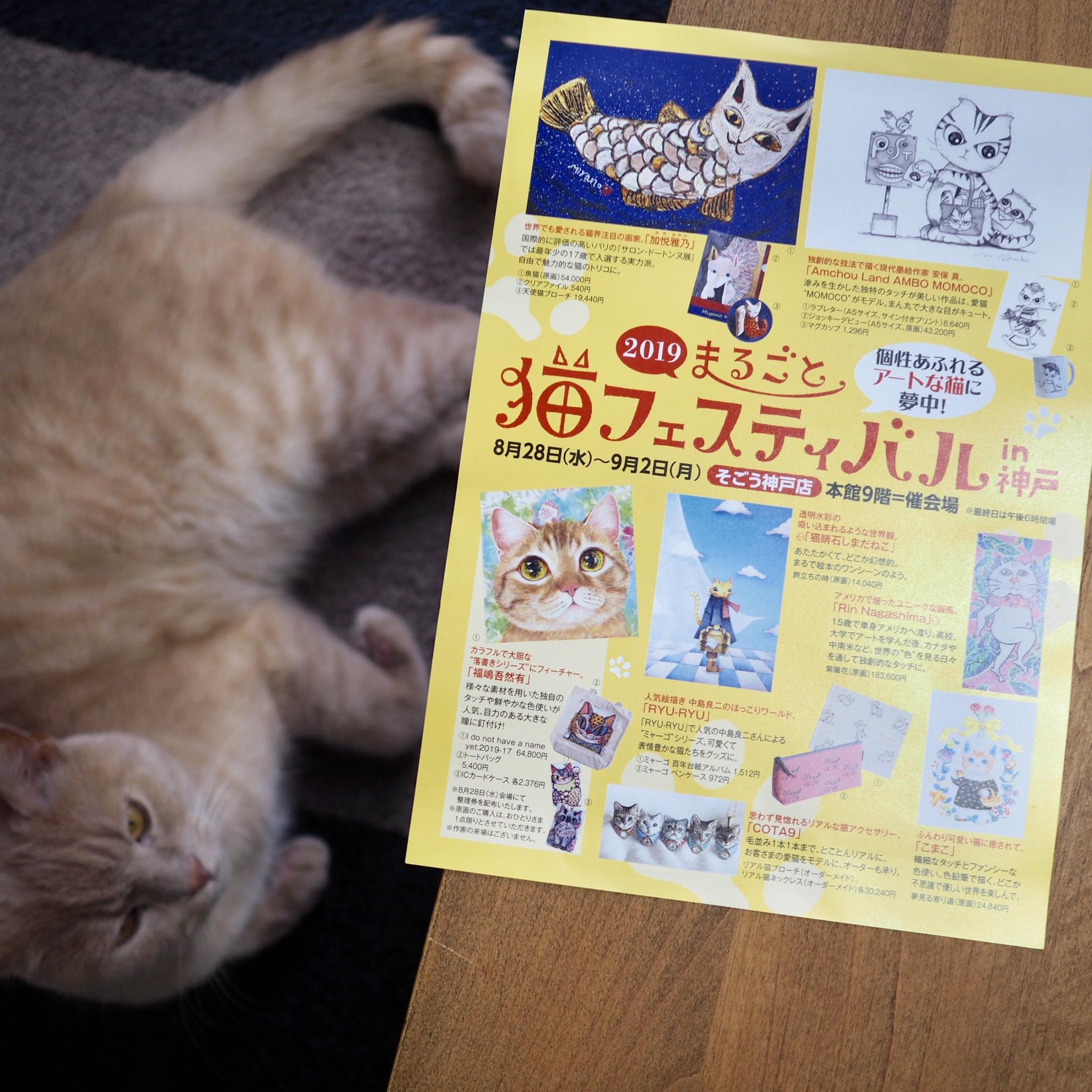 猫フェス 神戸SOGO