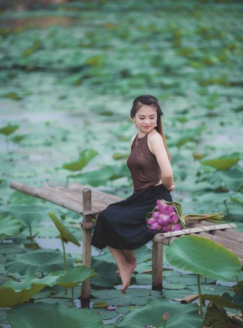 lotus-3524694_1920.jpg