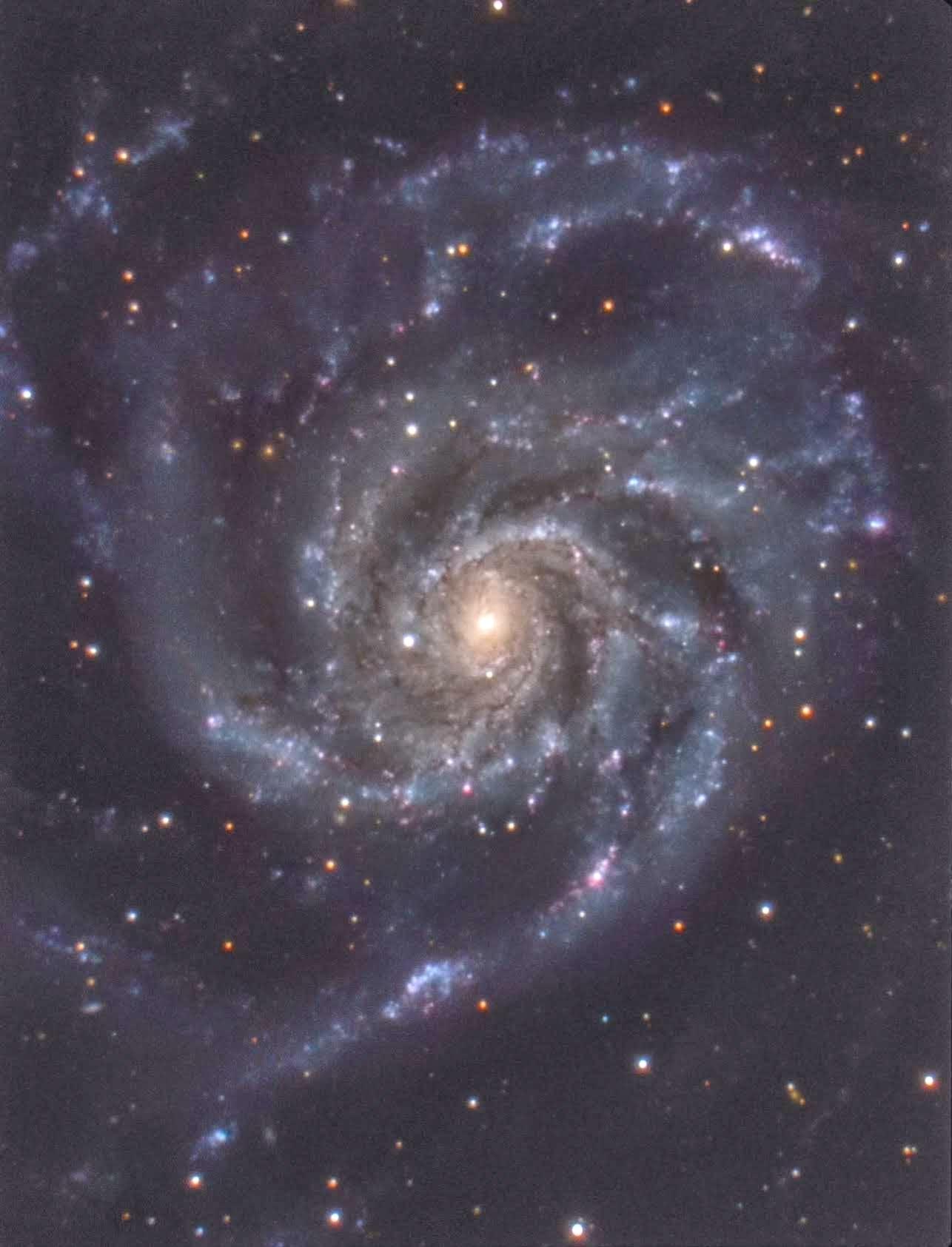 M101 C11+u250+BKP200