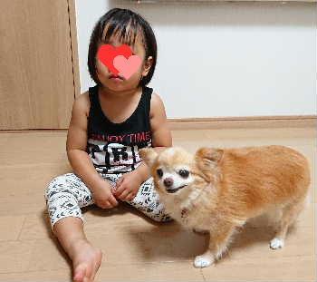 blog2019082801.jpg