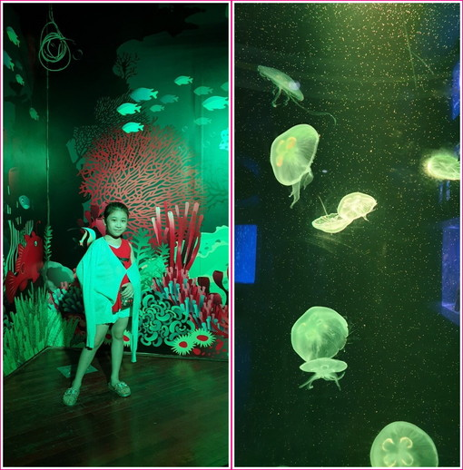 In aquarium (7)