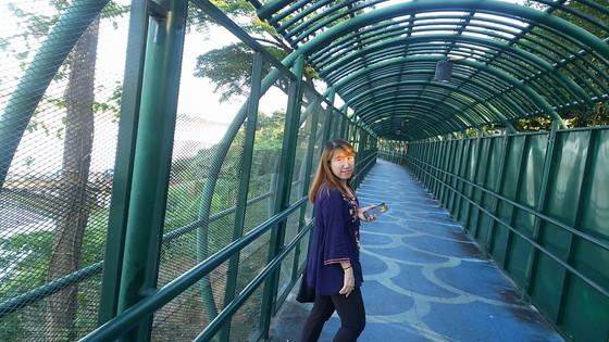Naga tunnel (7)