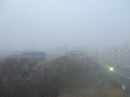 先行きの見えない朝・霧に煙る
