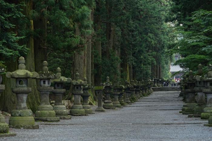 北口本宮富士浅間神社DSC05042