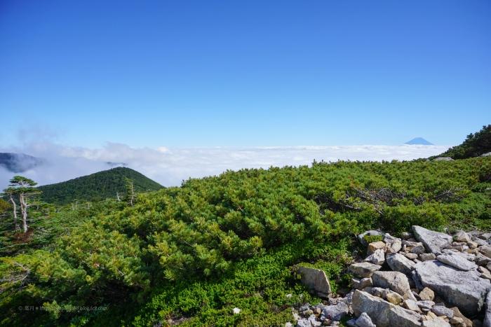 金峰山DSC01056