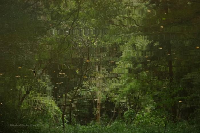 小山田緑地DSC06661