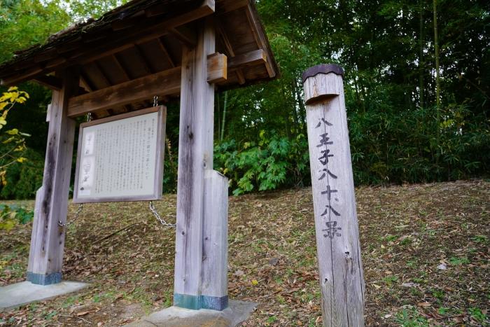 蓮生寺公園DSC07844