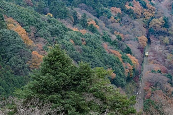 高尾山ケーブルカーDSC08287