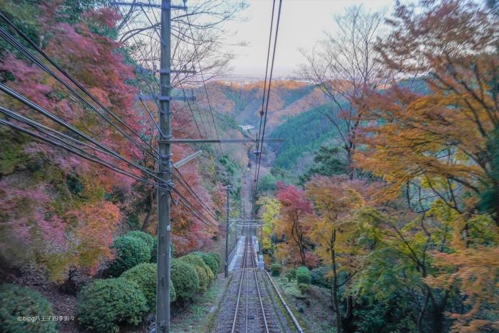高尾山ケーブルカーDSC08784