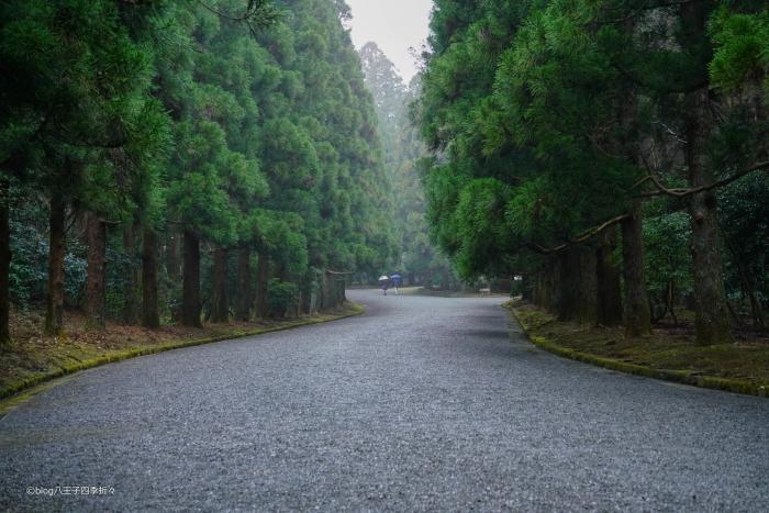 武蔵陵DSC00185
