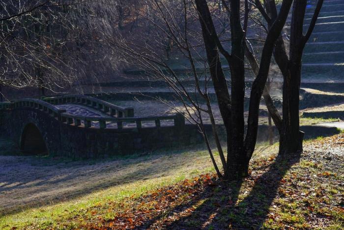 栃谷戸公園DSC01038