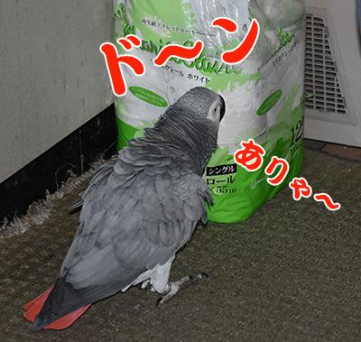 7_どーん