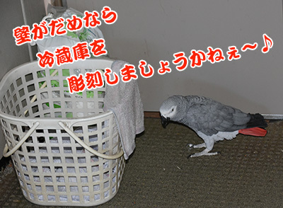 10_冷蔵庫