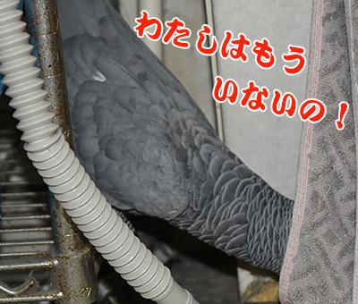 9_いじいじ