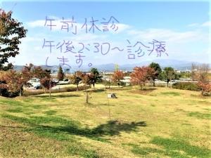 resized_05 9suke (2)_LI