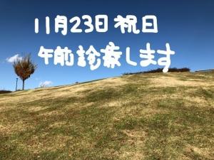 resized_04 kimi4_LI