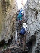 P2019918、ハシゴを登る