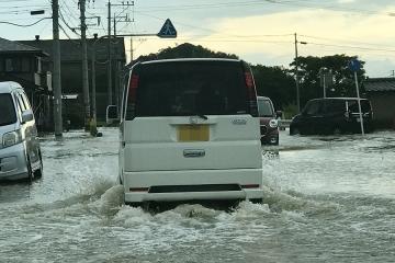 大雨後(1)