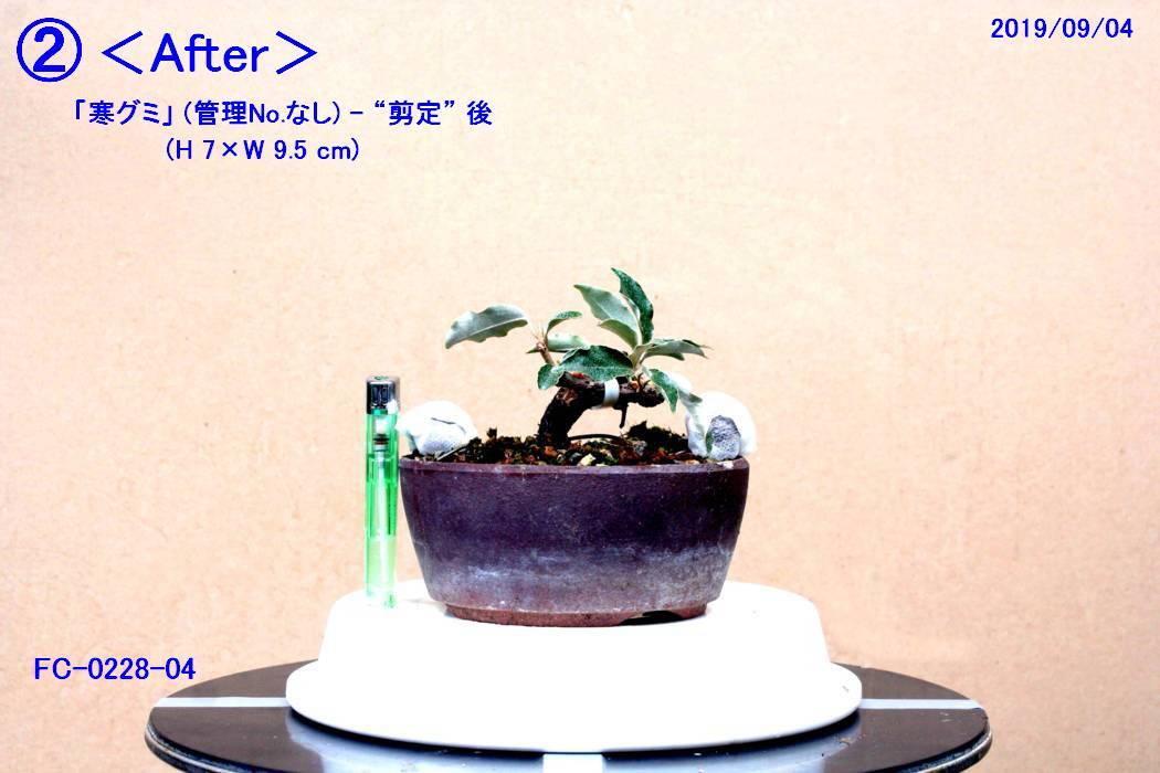 FC0228-04.jpg