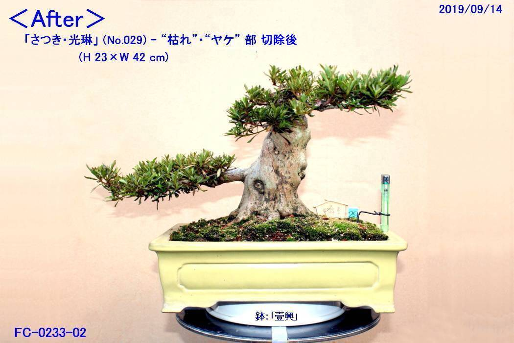 FC0233-02.jpg