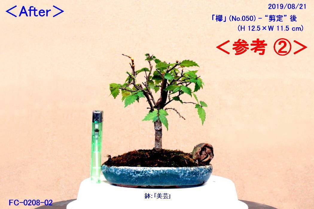 FC0234-04.jpg