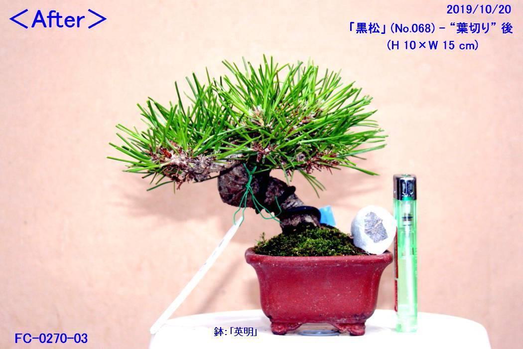 FC0270-03.jpg
