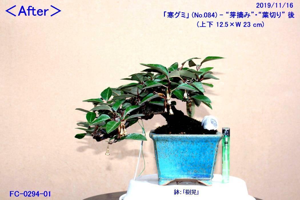 FC0294-01.jpg