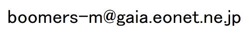 メッシュキャップNET販売用アドレス画像