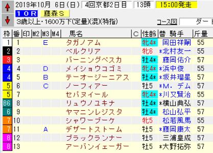 19藤森S