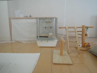 200219 (2)