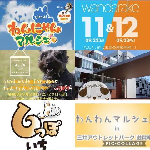 2019秋イベント