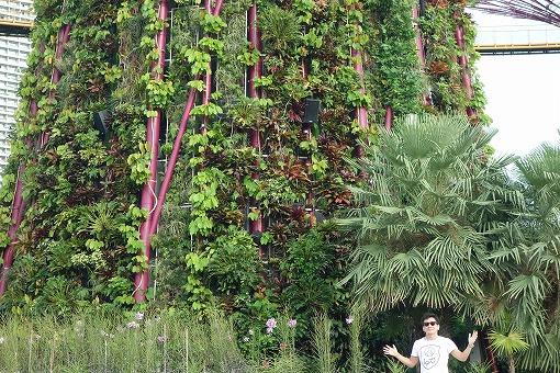 未来的なデザインと植物が融合した特徴的な景観となっています。