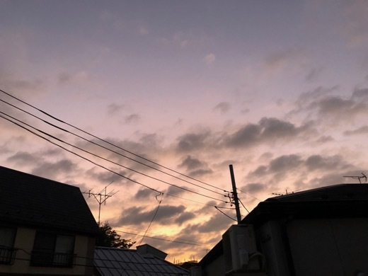IMG_5199.jpg