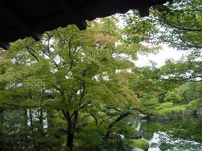 shukusho-RIMG0406_20190830185929018.jpg