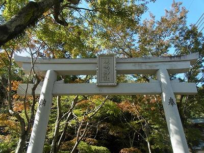 shukusho-RIMG0713.jpg