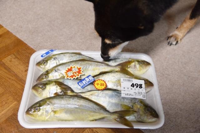 food_7244.jpg