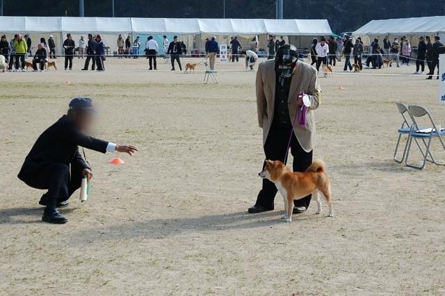 nippojoshibu_0980.jpg