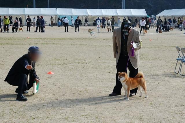 nippojoshibu_0981.jpg