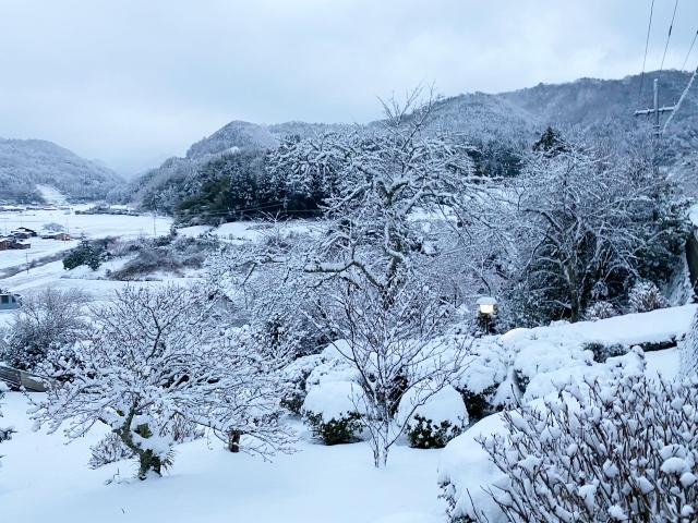 snow_1334.jpg