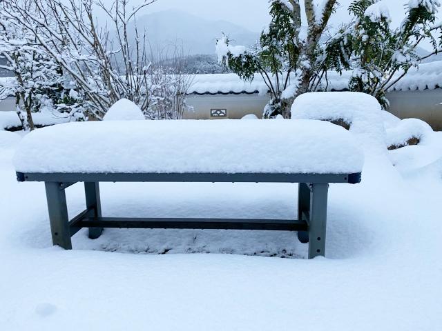 snow_1336.jpg