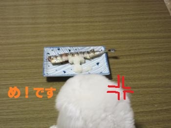IMG_2602_convert_20200221221633.jpg